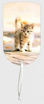 Záložka magnetická / Kotě